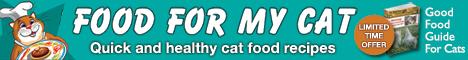 Cat Banner