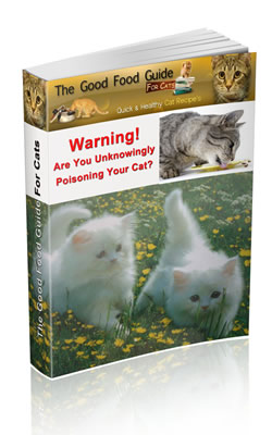 Cat nutrition food for cats as promised every week you will receive recipes for your cats you can use some or all of these recipes to prepare some delicious food for your cat forumfinder Choice Image
